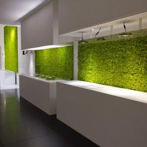 moss-wall-mech-scienny